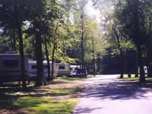Timberlane Campground - Clarksboro NJ