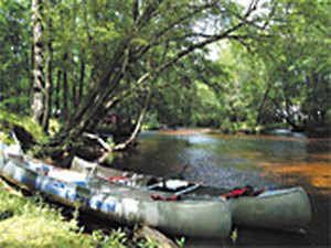 Winding River Campground - Mays Landing NJ